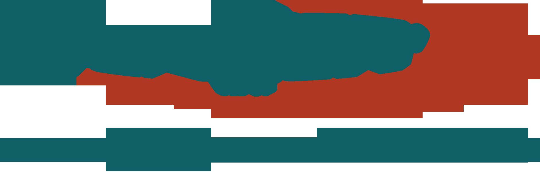 center logo plazmasebészet